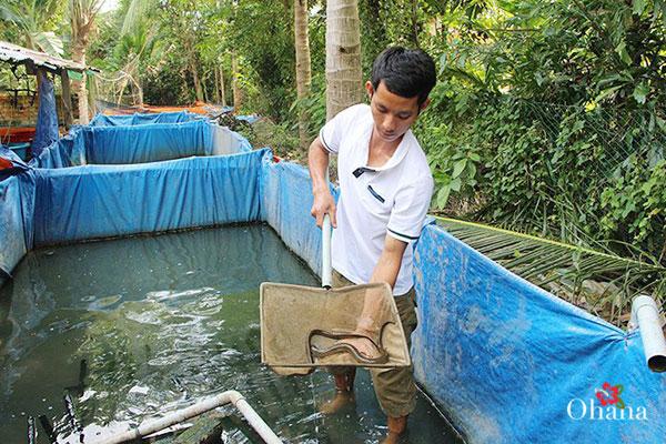 Thu hoạch lươn đúng cách