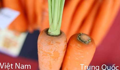 Phân biệt cà rốt trung quốc và việt nam