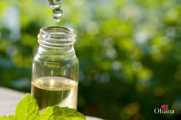 14+ tác dụng của tinh dầu tràm – cách dùng và lưu ý quan trọng